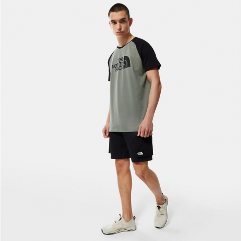 The North Face Men's Raglan Easy T-Shirt Agave Green